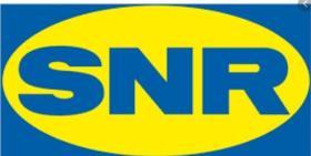 SUBFAMILIA DE SNR  SNR
